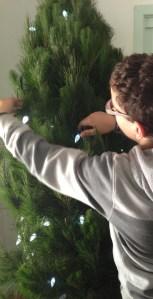 lights on the tree