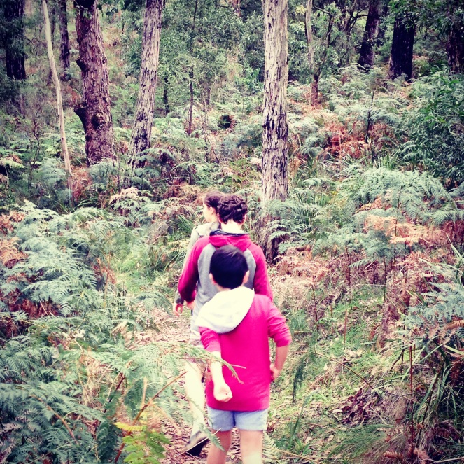 Bushwalking